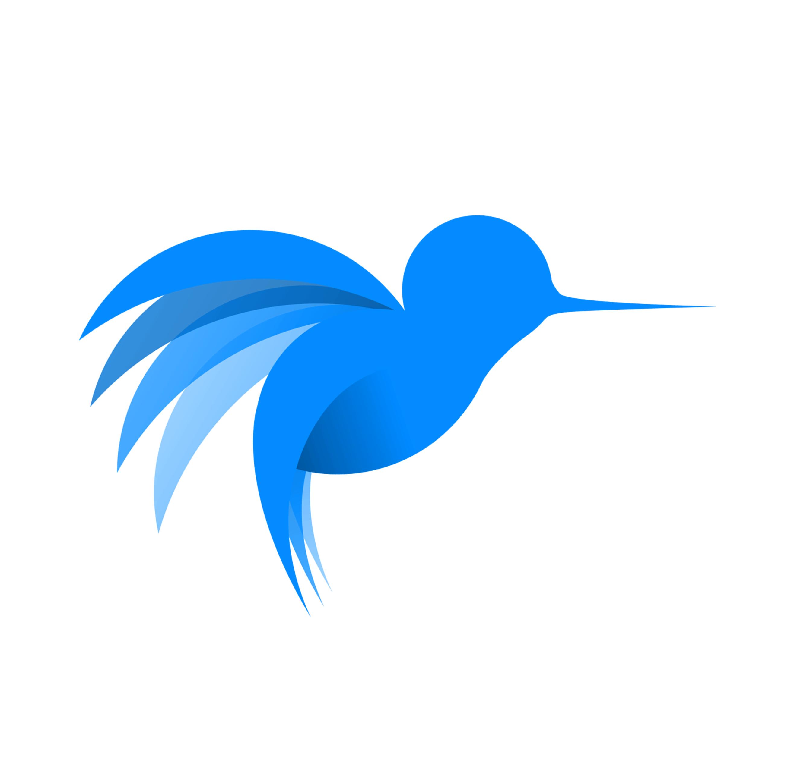 Hummingbird IT